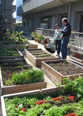 Orti urbani: l'agricoltura arriva nelle città italiane