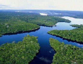 Amazzonia_Brasile