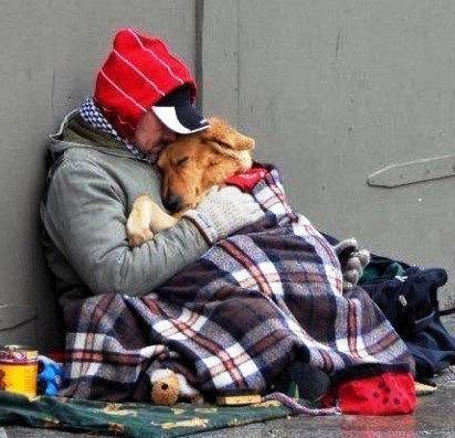 senzatetto_cane