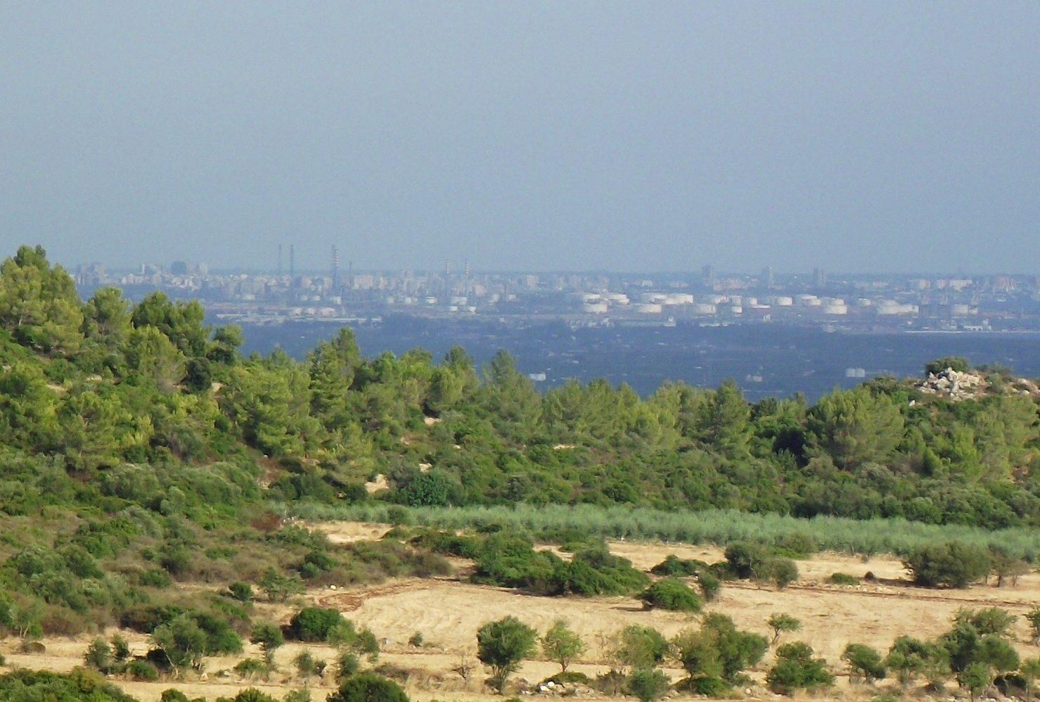 Taranto: un bosco urbano per riqualificare il quartiere Tamburi