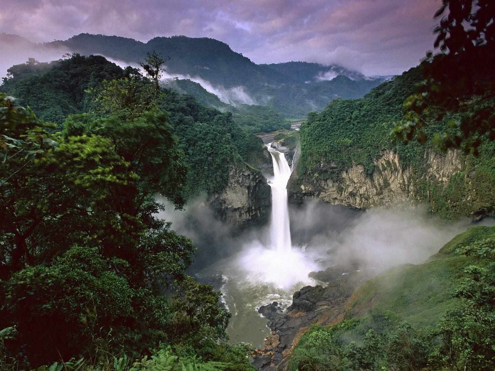 Berlino dona oltre 30milioni all'Ecuador per proteggere lo Yasuní