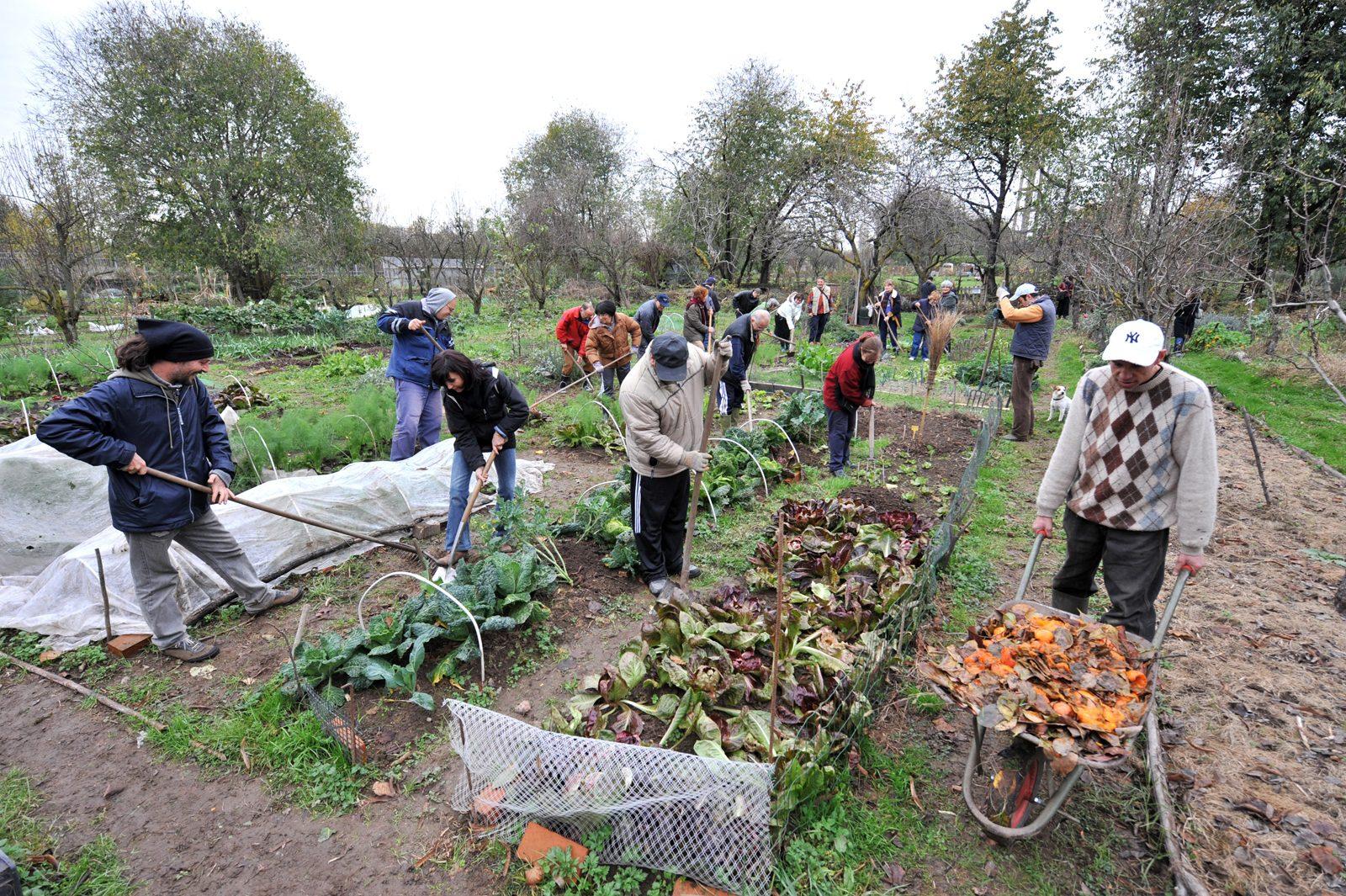 Agricoltura Civica Award, innovatori sociali fatevi avanti