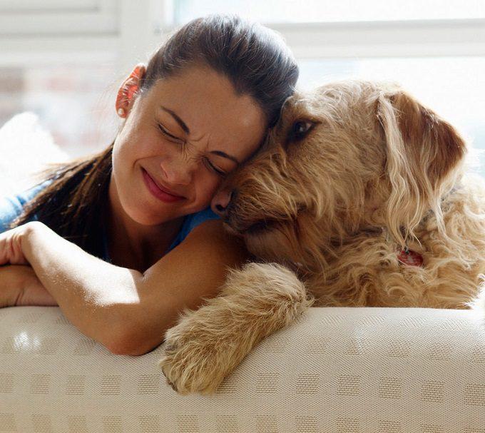 Chi adotta un bastardino farà una vita meno da cani