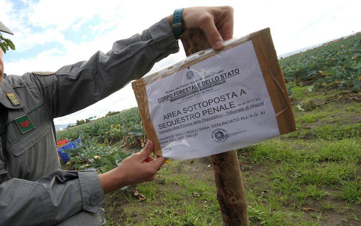 """Emergenza """"Terra dei Fuochi"""", approvato il decreto: bruciare i rifiuti diventa reato"""