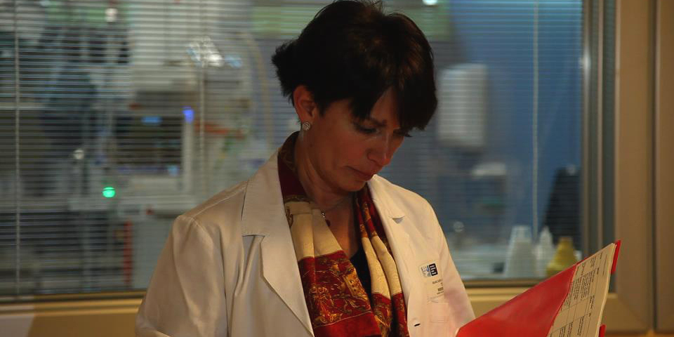 Grosseto, dottoressa crea un Codice Rosa per soccorrere vittime di violenza sessuale e domestica