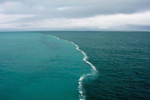 Il meraviglioso incontro del Bar Baltico con Mare del Nord: due rive che si incontrano ma non si annullano.