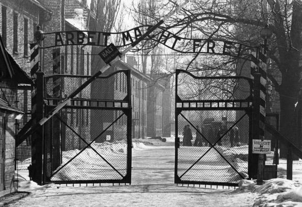 Oggi è la Giornata della Memoria, giorno della liberazione di Auschwitz