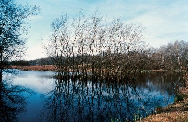 Ambiente: tre nuovi siti naturalistici italiani diventano patrimonio Unesco