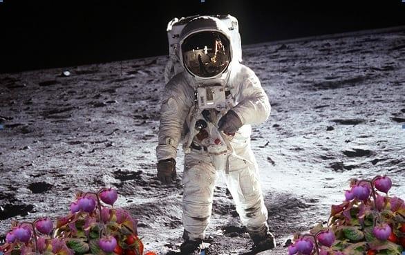 Spazio: verdure fresche in orbita, progetto Enea per l'orto degli astronauti