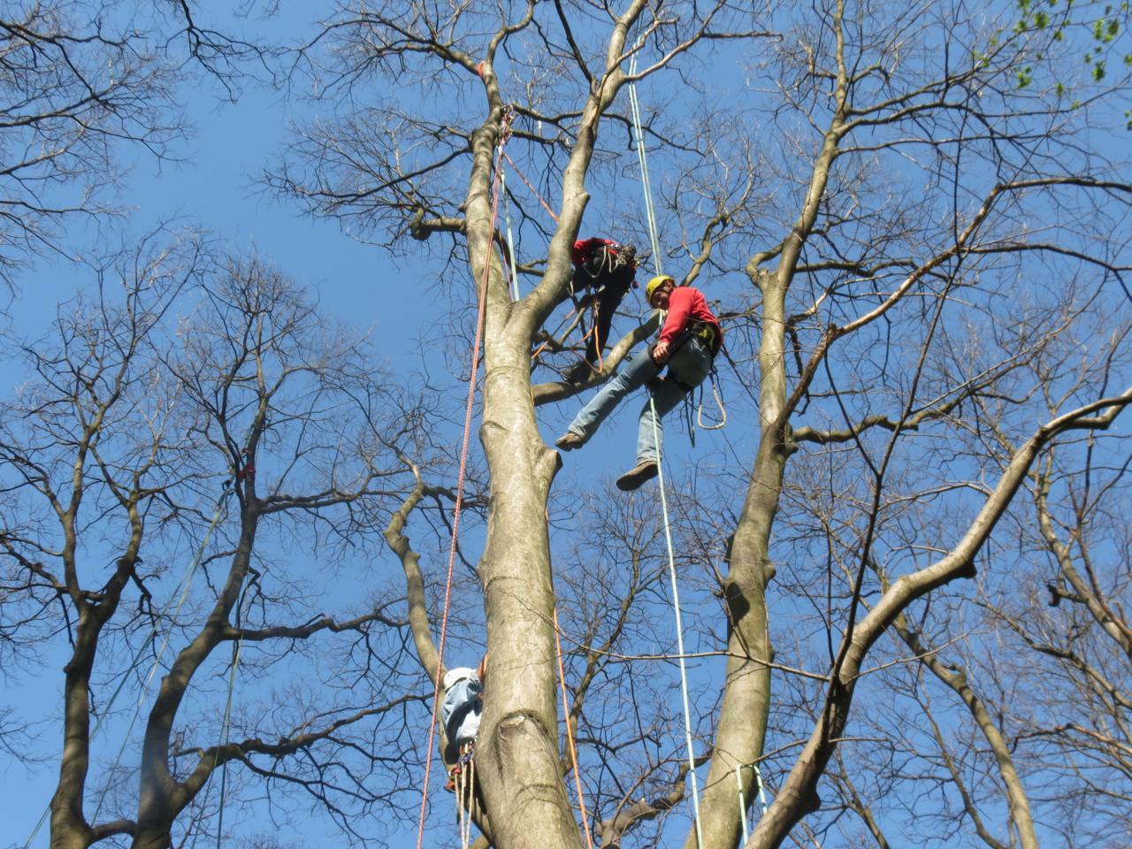 Dal tree climbing ai corsi di compostaggio, è il Garden Show