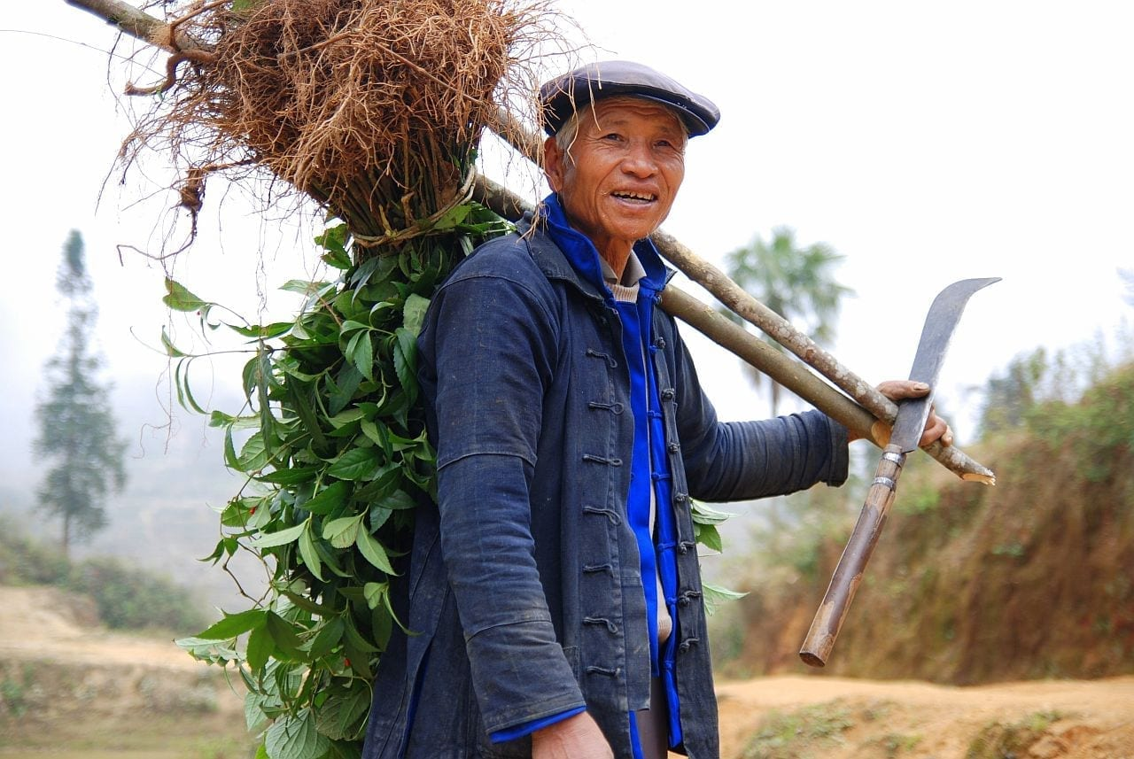 Slow Food sbarca in Cina per costruire la cultura del buon cibo
