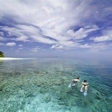 maldive_225x225.jpg