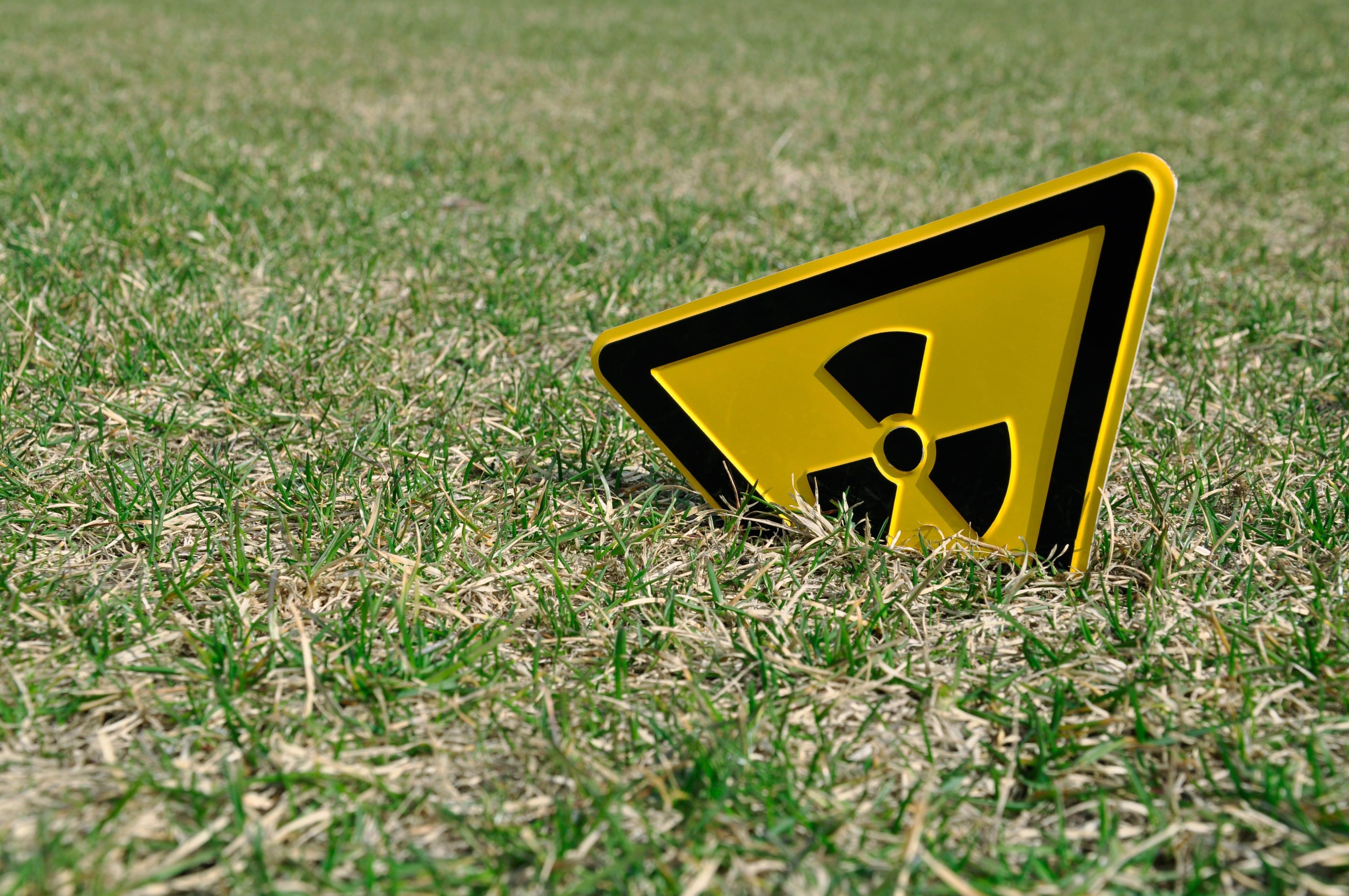 Nucleare: il modello d'Oltralpe, in esercizio dal 1992/Focus