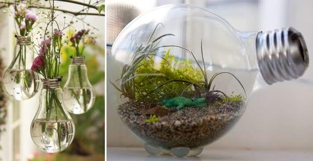Un bosco in una lampadina e altre idee per trasformare la propria casa in un giardino