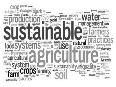 sostenibilita_parole.jpg