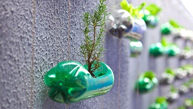10 idee di riciclo creativo delle bottiglie in plastica