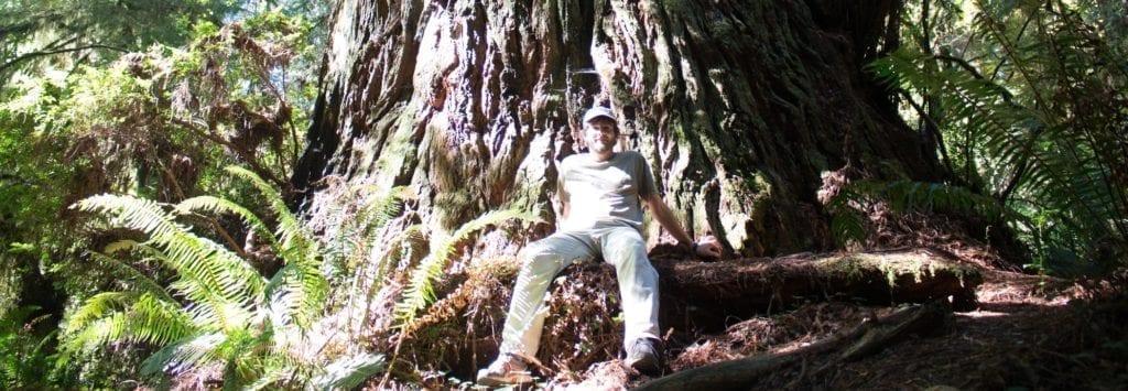 Giorgio Vacchiano, ricercatore e docente in gestione e pianificazione forestale all'Università statale di Milano