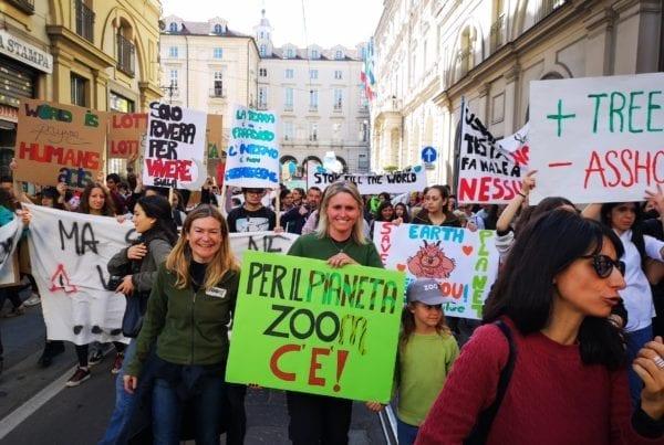 Fridays for future durante una delle manifestazioni a Torino